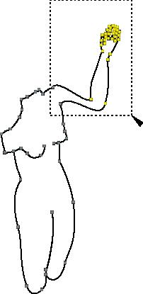 path6005