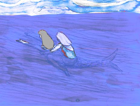 Immagine 11