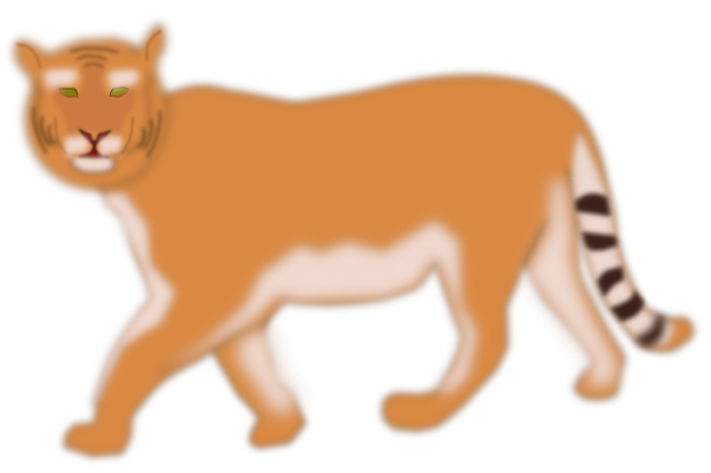 Tigre6