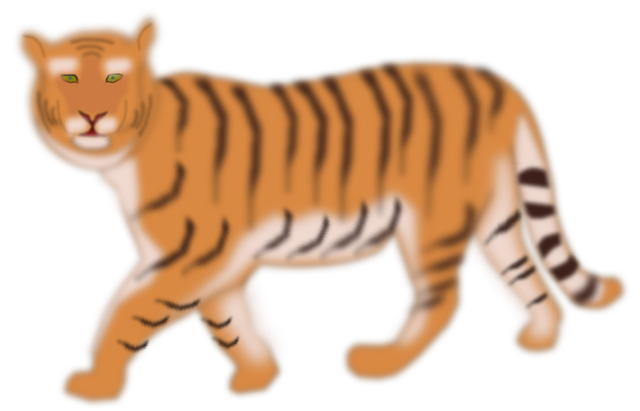 Tigre7